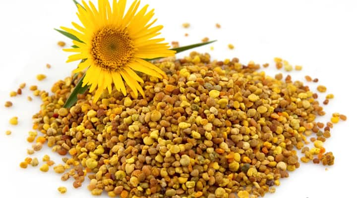 Pile of flower pollen with sunflower for prostate health