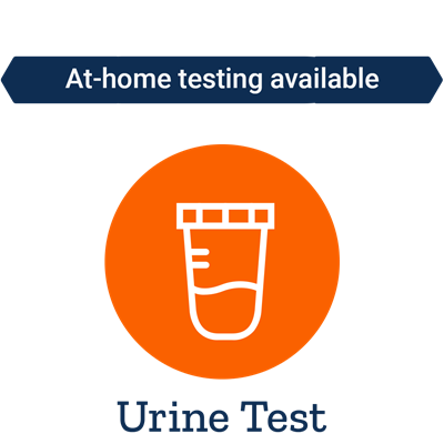 Neurotransmitter Panel (Basic) Urine Test - Life Extension