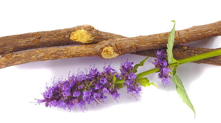 Licorice root with compounds that support healthy digestion