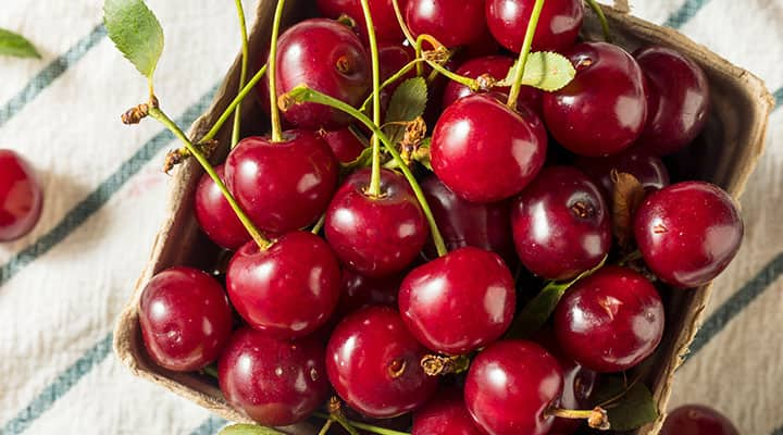 Container of tart cherries with a concentration of melatonin