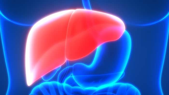 """The """"Hidden"""" Liver Disease"""