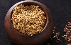 Flax fiber suppresses appetite and food intake