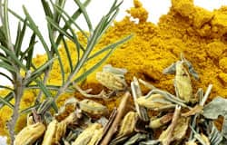 Common spices inhibit AGE