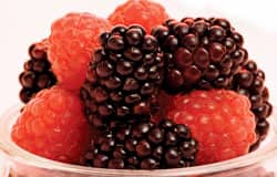 Berries protect against carcinogen-induced gene changes