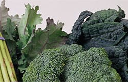 Compound in broccoli may help protect against asthma and other respiratory disease