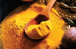 Supplementation with curcumin prevents progression to diabetes among prediabetics