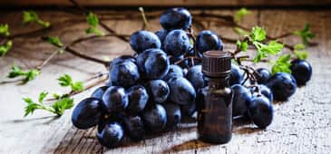 Grape seed extract, resveratrol show promise against colon cancer