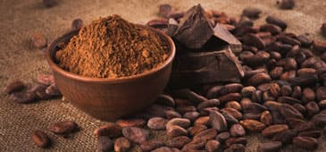 Cocoa flavanols: new nutraceutical?