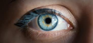 Increased calcium intake associated with lower risk of progression to late AMD