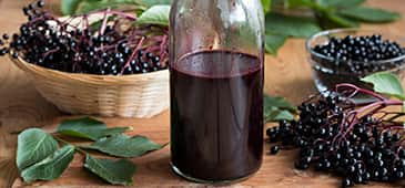 How elderberry fights flu