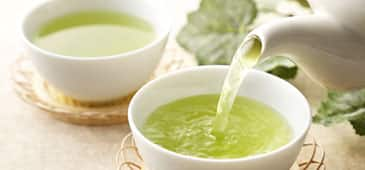 Green tea plus exercise lowers fatty liver disease severity