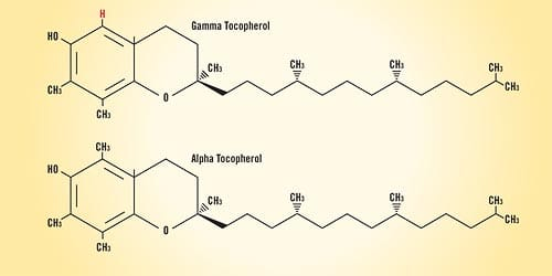 Gamma Tocopherol and Alpha Tocopherol - page 1 | Life Extension