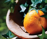 limonene contained in orange oil as Orange essential oil, cold-pressed from the rinds of oranges, has a juicy aroma reminiscent of the fresh fruit it has a clean, refreshing scent and flavour and contains the naturally occurring constituent limonene.