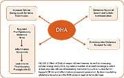 DHA also maintains the activity of a key cell membrane enzyme called Na+/K+ ATPase that extracts energy from ATP to drive the cellular sodium pump, which controls electrical impulses betweens cells.