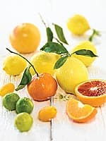 Fighting Cancer Metastasis and Heavy Metal Toxicities With Modified Citrus Pectin