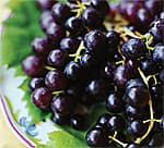 Berries and Grapes: Plant Polyphenols Preserve Memory