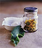 Herbal Extracts Spice up Memory
