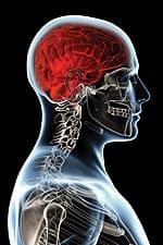 Omega-3 Fatty Acids, Brain Volume - page 1