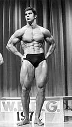 Lou Ferrigno, Incredible Forever