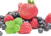 Berries Protect the Brain in Several Ways
