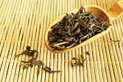 Green Tea Phytosome