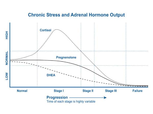 Chronic Stress and Adrenal Hormone Output