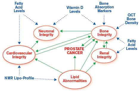 THE WHOLISTIC NATURE OF HEALTH IN RELATION TO PROSTATE CANCER.