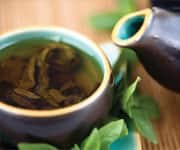 Green Tea Inhibits Hypoperfusion Damage
