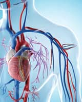 Determining Your Cardiovascular Risk