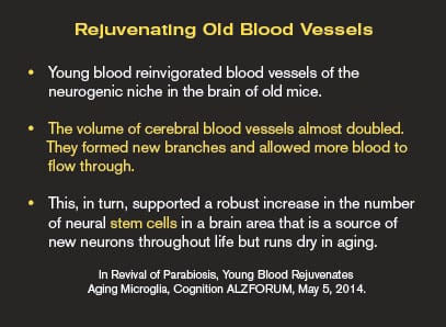 Rejuvenating Old Blood Vessels