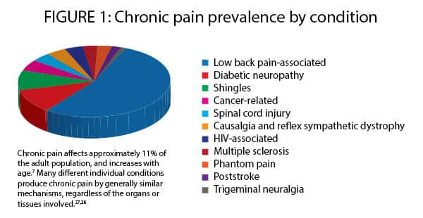 FIGURE 1: CHRONIC PAIN PREVALENCE BY CONDITION