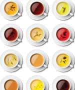 Cups of different tea's