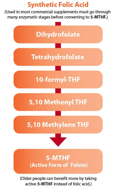 synthetic folic acid to 5-MTHF conversion chart