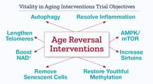 Vitality in Aging Interventions Trial Objectives