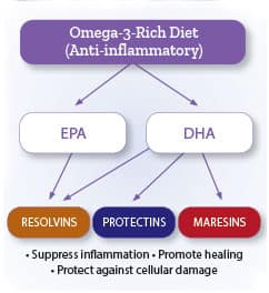 Infographic of EPA and DHA