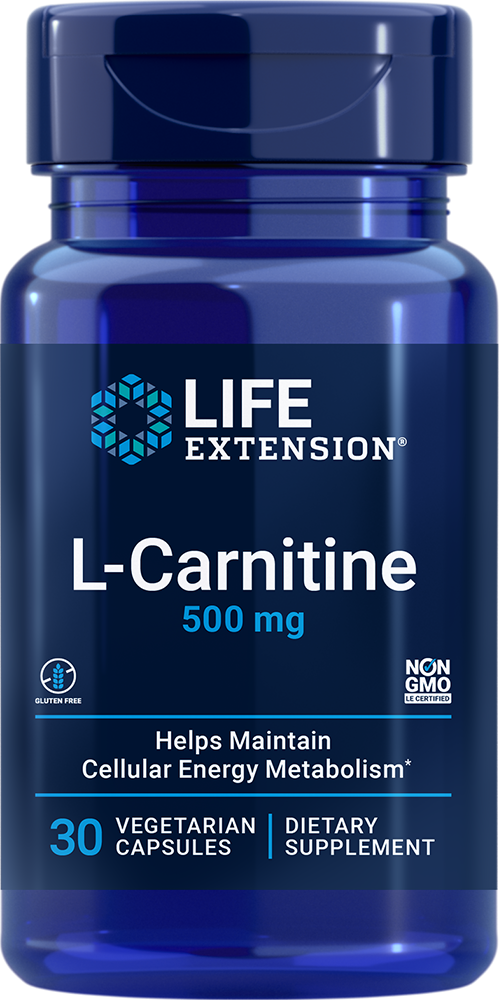 Mitochondria, the powerhouses found within human cells, produce the energy that vital tissues need to keep us vibrant, healthy, and young.1 Normal levels of carnitine support optimum functioning of mitochondria. The problem is that over time,  levels of carnitine decline