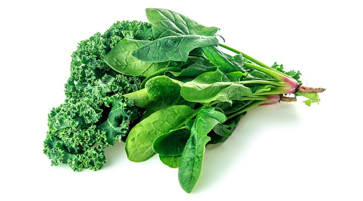 Spinach and kale sources of vitamin K1