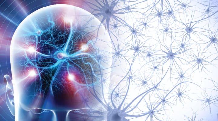 Neurotransmitter Panel (Basic) | Urine Test | Life Extension