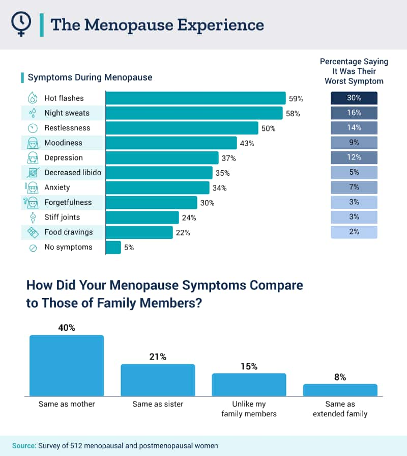 The Menopause Experience